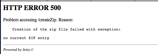 Server exception error screenshot